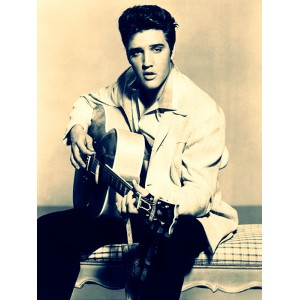 Placa Decorativa - Elvis Presley