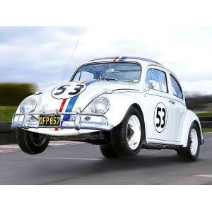 Placa Decorativa - Herbie